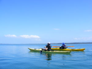 Sea Kayaking Anglesey
